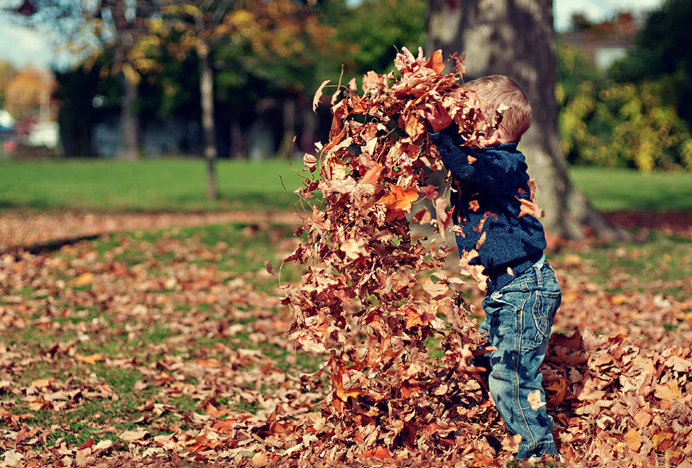 kid-play-with- leaf